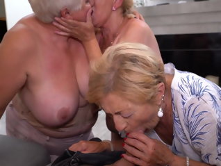 grannies , hungry , attack ,  ,  ,